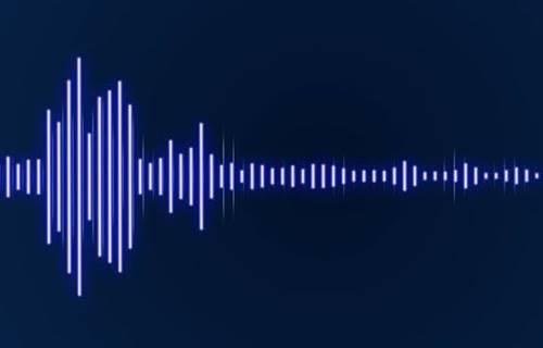 jenis-jenis bunyi